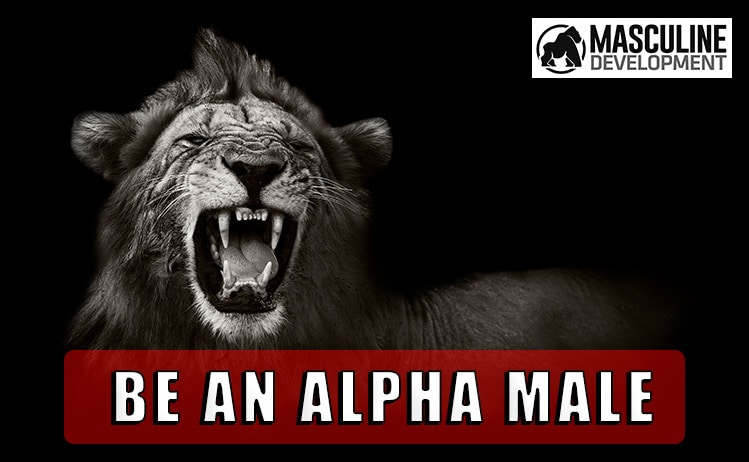 how to be an alpha male mindset