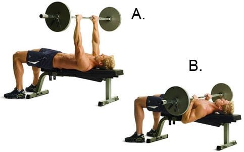 ss workout bench press