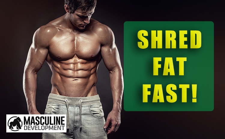 how to get shredded