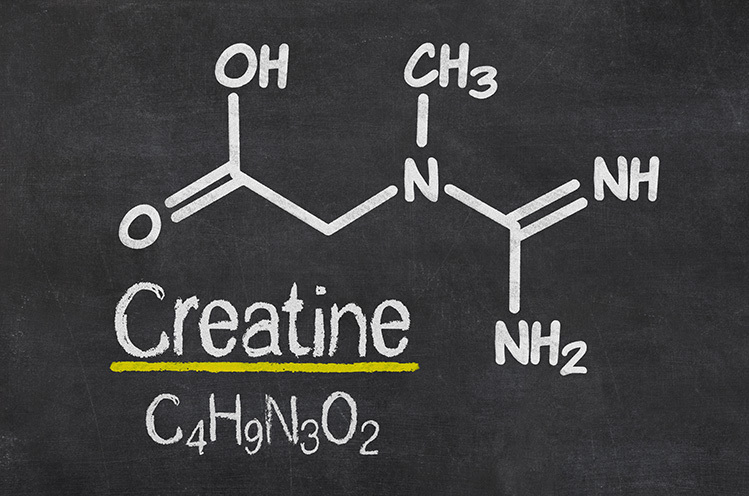 what is creatine molecular chemistry