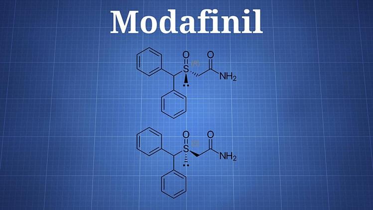 modafinil maximum dosage