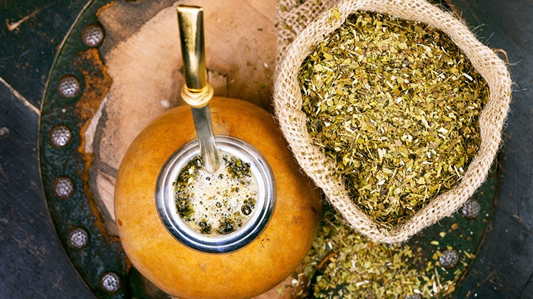 yerba mate cheat day benefits