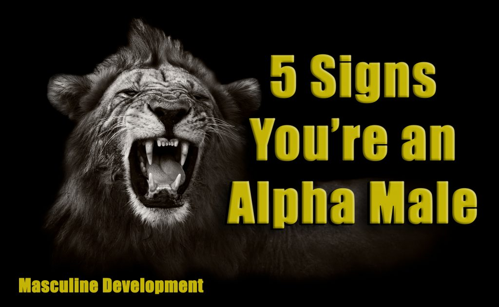 Signs Youre an Alpha Male