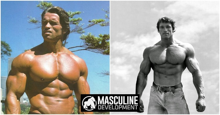 best chest exercises arnold