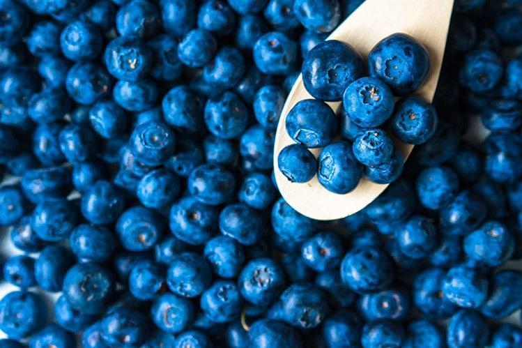 best bodybuilding foods blueberries antioxidants