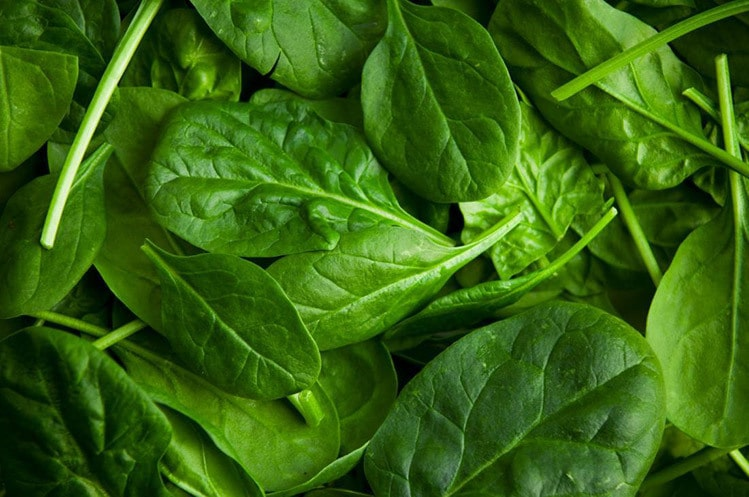 best bodybuilding foods spinach micronutrients