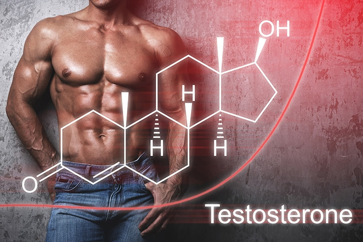 best post cycle therapy testosterone