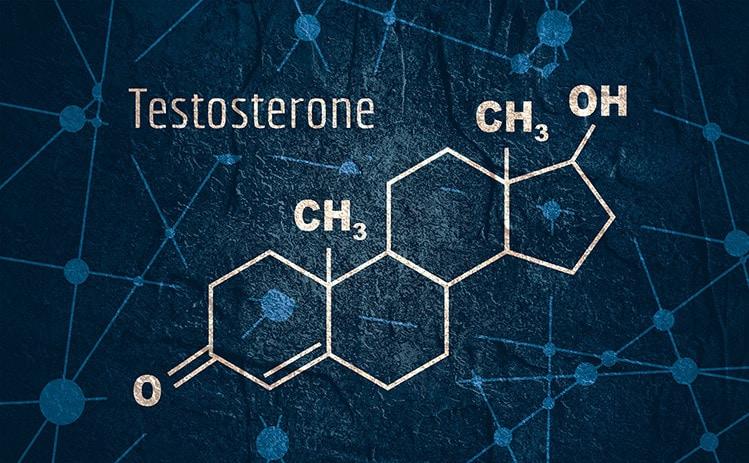 nitraflex testosterone