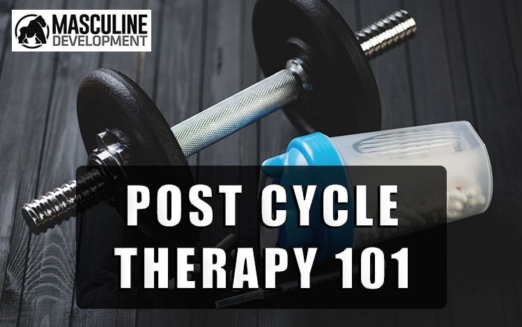 post cycle therapy