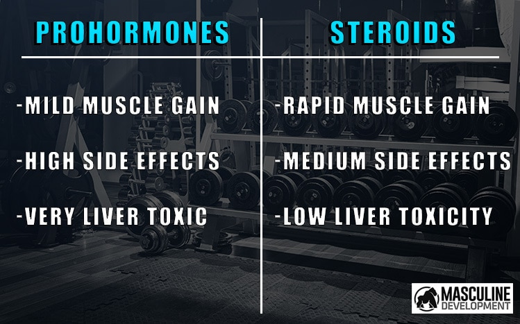 prohormones vs steroids
